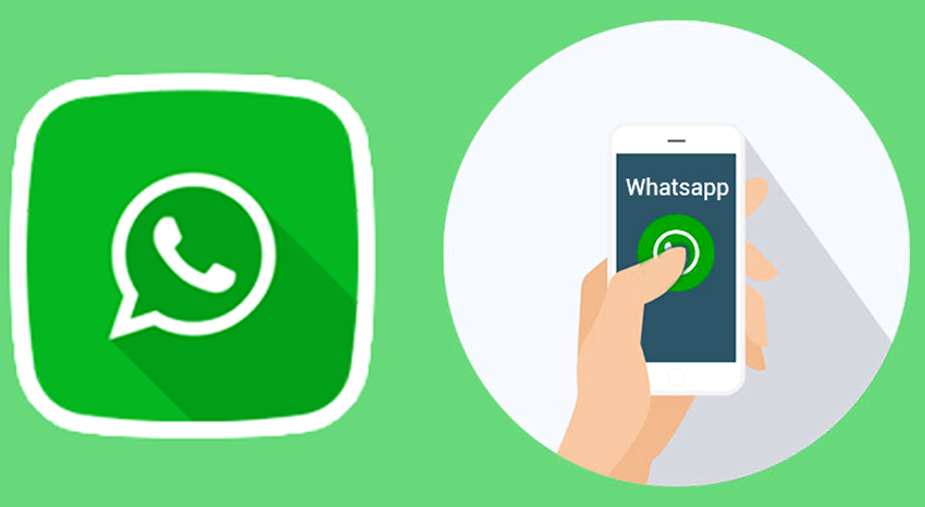 whatsapp status ranking features